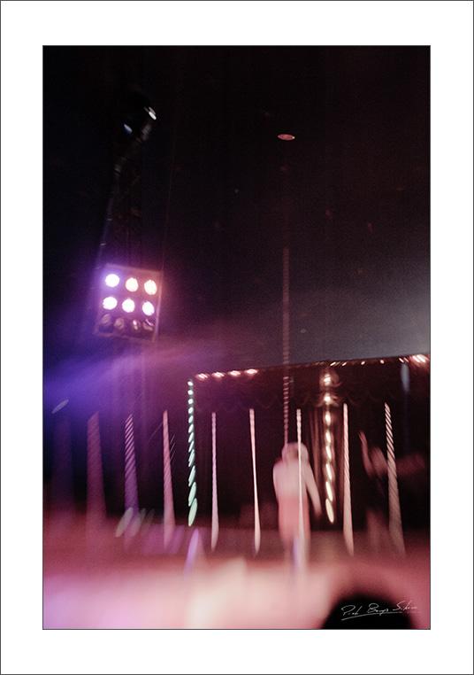 _DSC8721_circus_web.jpg
