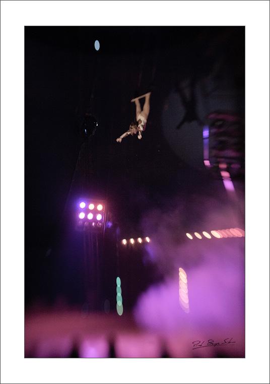 _DSC8839_circus_web.jpg